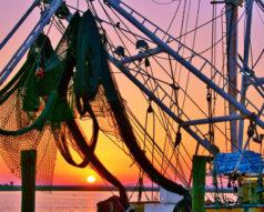 Shrimpboat Sunrise 1