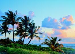 Morning On Key Biscayne 1