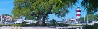 The Liberty Oak, Harbour Town