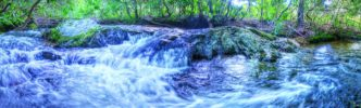 Fodder Creek