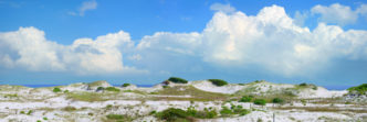 The Dunes of 30A, Series 2