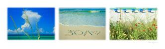 Love 30A