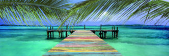 The Bahamas and Other Caribbean